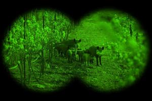 Los mejores prismáticos nocturnos